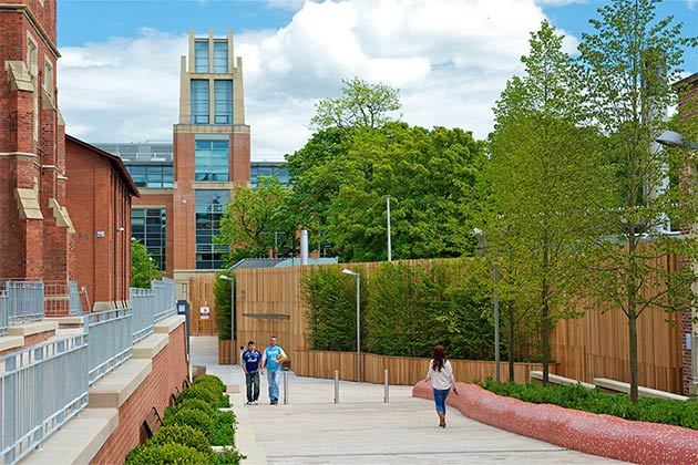path leading to McClay Lbrary from Lanyon